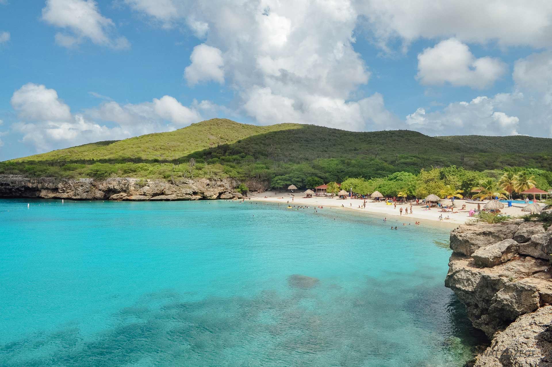 Blauw Curaçao Grote Knip (Kenepa)