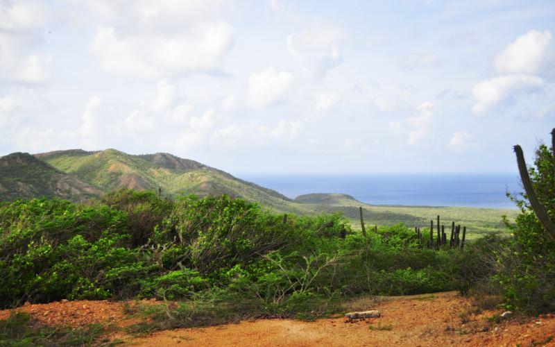 Blauw en groen van Curaçao Christoffelpark