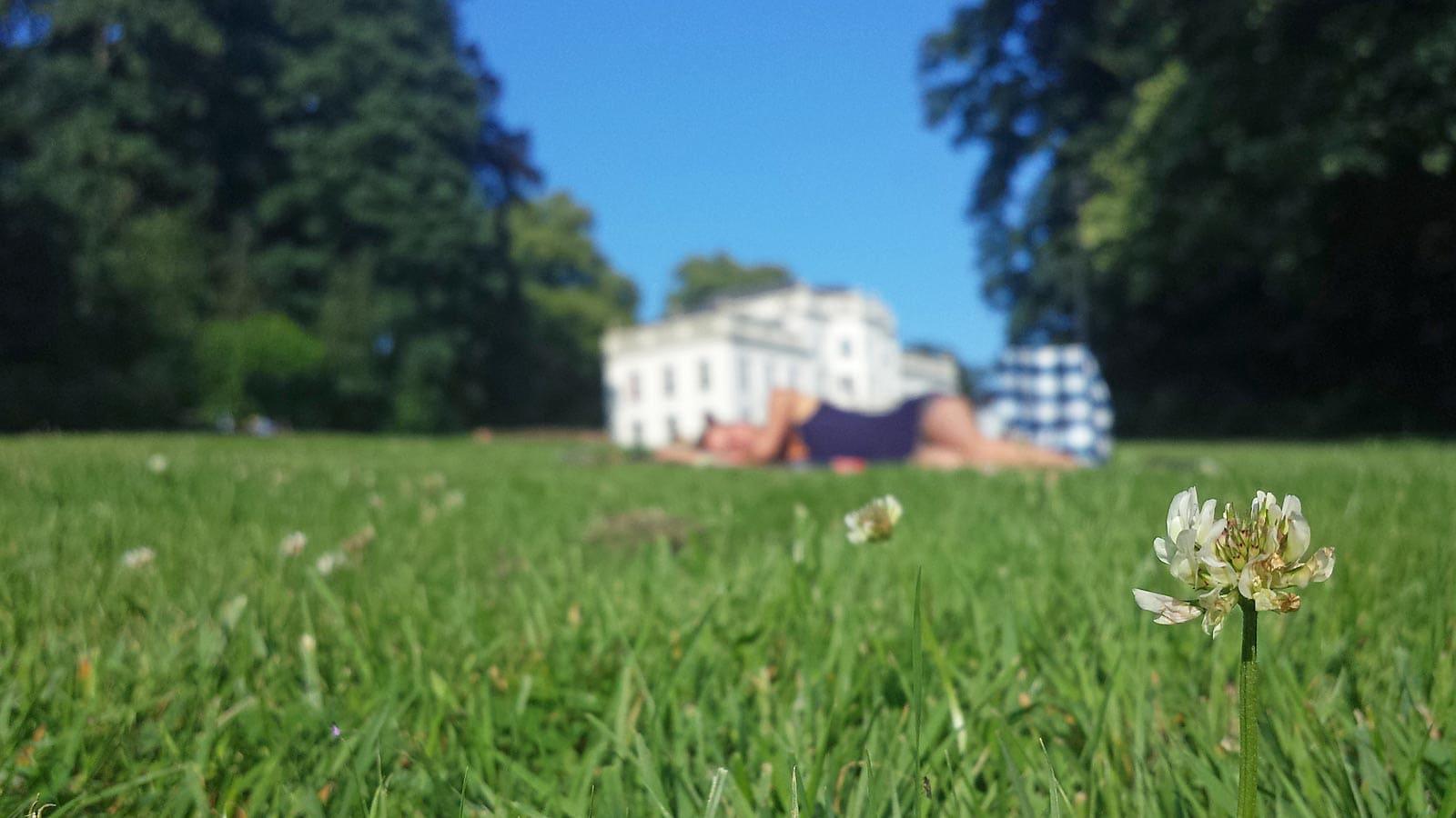 Meer dan genoeg te doen in Sonsbeekpark in Arnhem