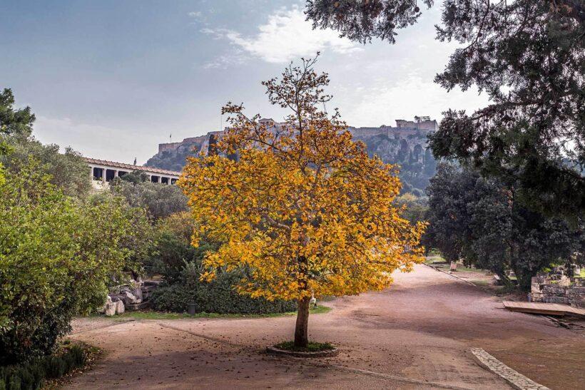 Oktober is de beste maand om Athene te bezoeken