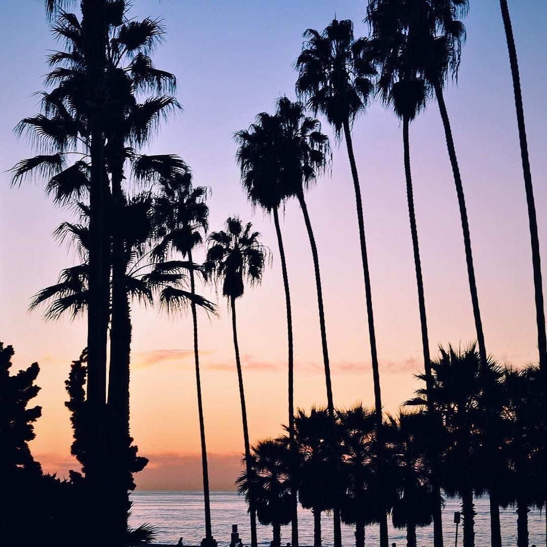 California Dreaming in La Jolla, San Diego