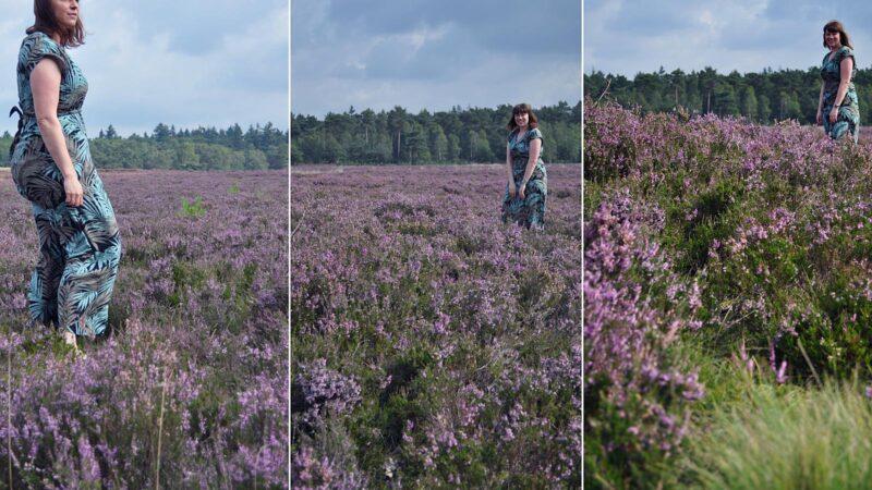 Fotograferen op de Ginkelse Heide: best lastig