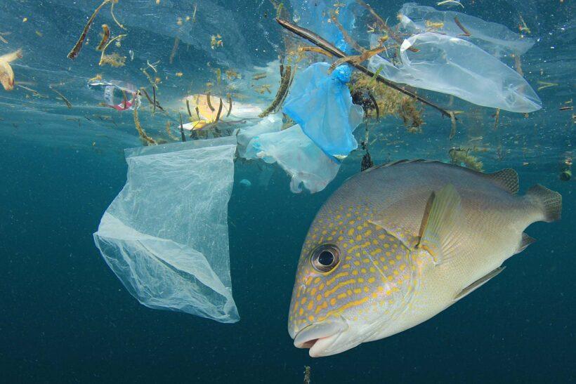 Plastic soep: Simpele tips om minder plastic te gebruiken