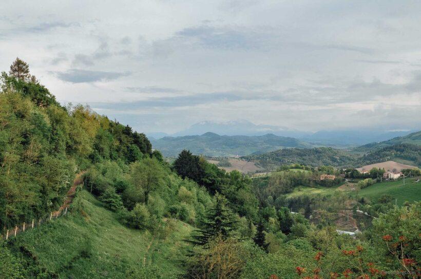 De groene heuvels van Le Marche