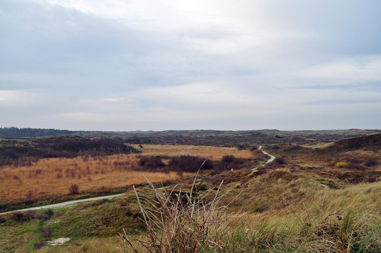 Lange wandelingen en fietstochten door het ruige landschap van Texel